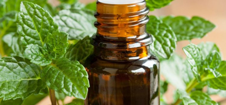 Medical News Today: Top 7 essential oils for sinus congestion