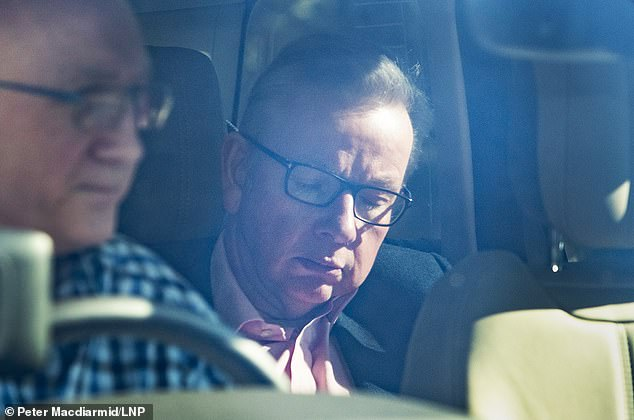 The meeting came hours after her de facto deputy David Lidington and Environment Secretary Michael Gove (pictured) were forced to deny claims that ministers planned to install one of them as a caretaker prime minister in a Cabinet coup