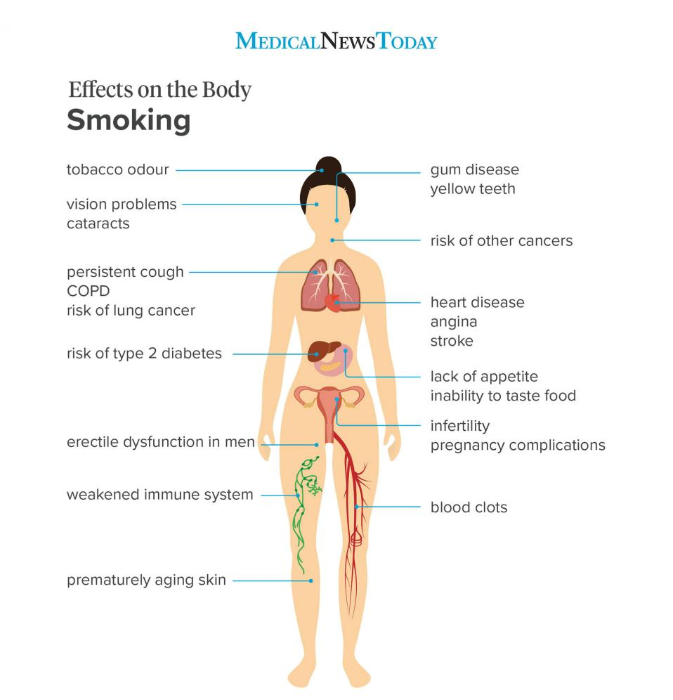 Effects on the body smoking <br>Image credit: Stephen kelly, 2019</br>