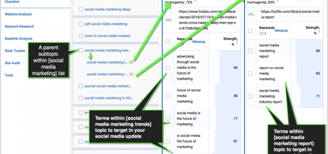 How SEO can (and should) inform social media marketing