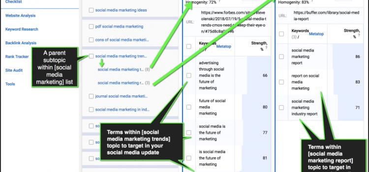 How SEO can (and should) inform social media marketing