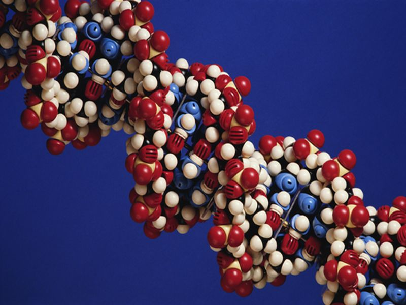 News Picture: How to Protect Your DNA for Big Health Benefits