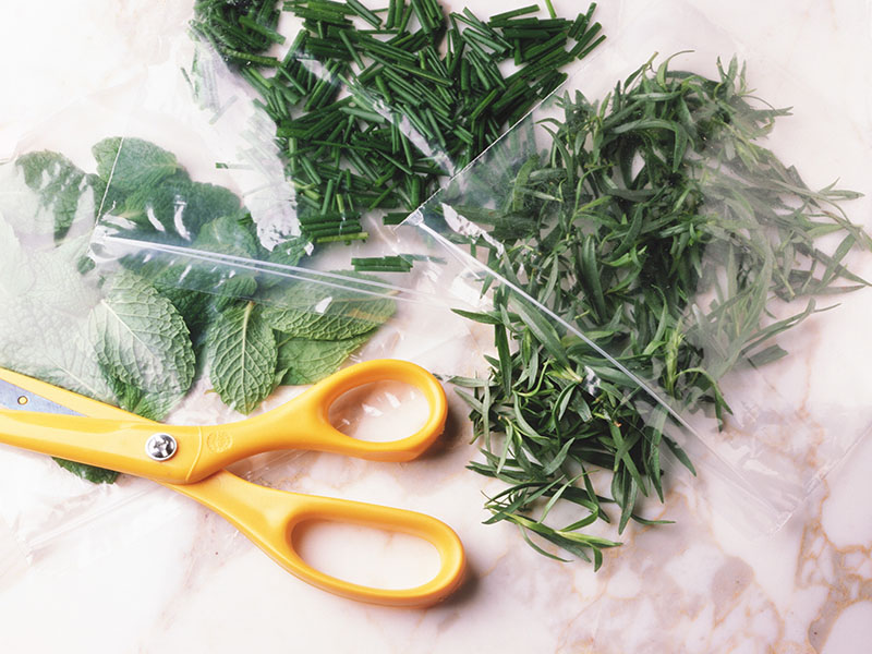 Spice Up Your Cooking With Licorice-Scented Herbs