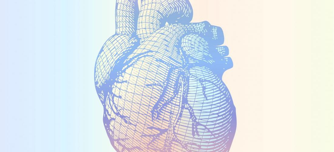New Research Explains the Potential Benefit of an Omega-6 Fatty Acid for Heart Health