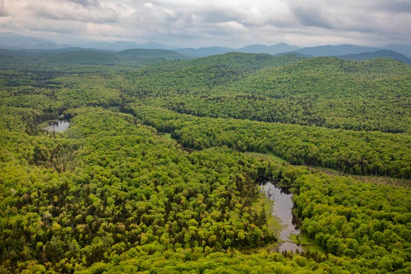 The view from above of the vast Adirondack Park.
