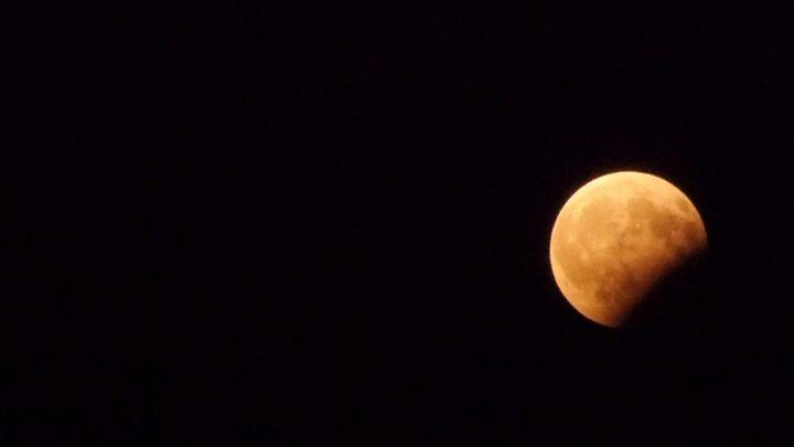 Apollo 11: Partial Lunar Eclipse Due on 50th Anniversary