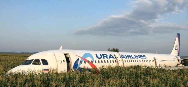 Russian Airplane Made an Emergency Landing in a Cornfield near Zhukovsky International Airport