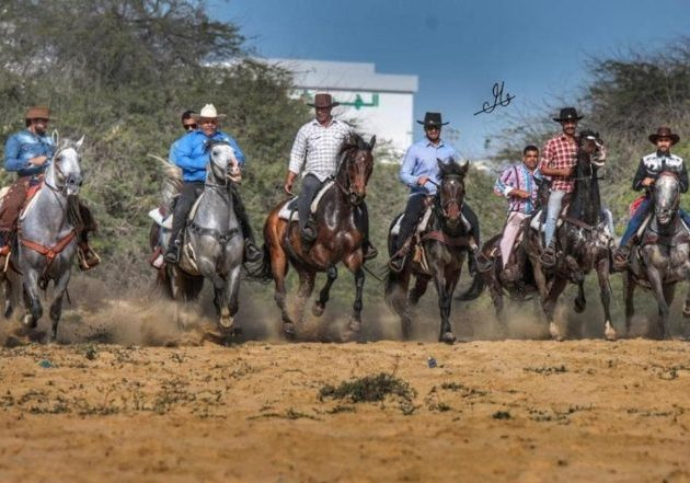 Film Featuring Cowboy Sport in Bahrain Attracts Huge Viewership