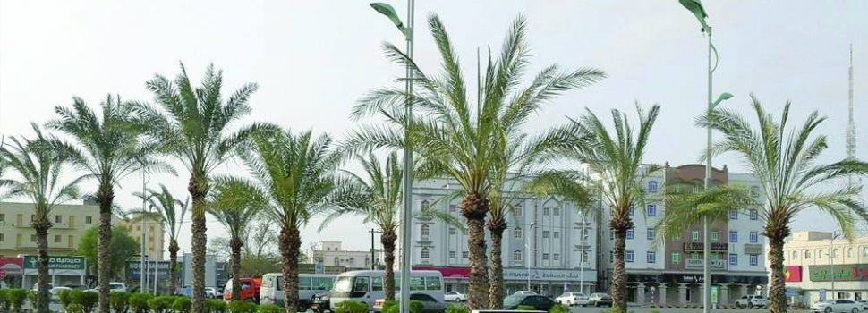 Boost to beautification projects in Saham